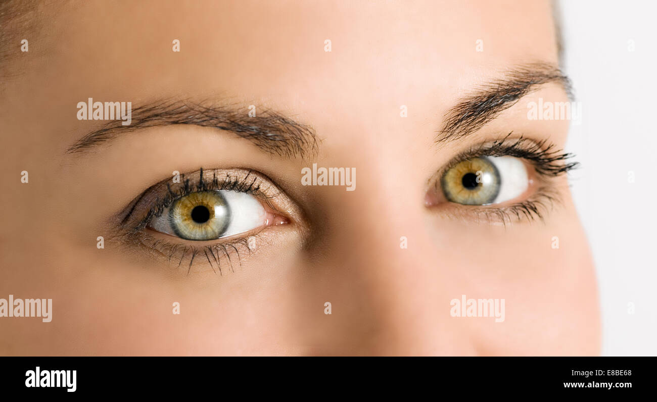 Detail of beautiful natural green eyes - Stock Image