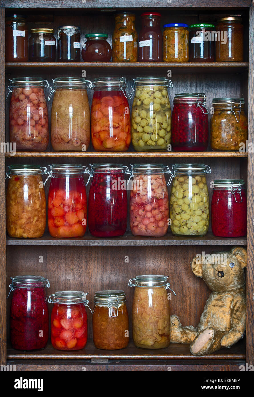 Threadbare One Eyed Teddy bear on a wooden shelf with stored bottled fruits, jams and preserves - Stock Image