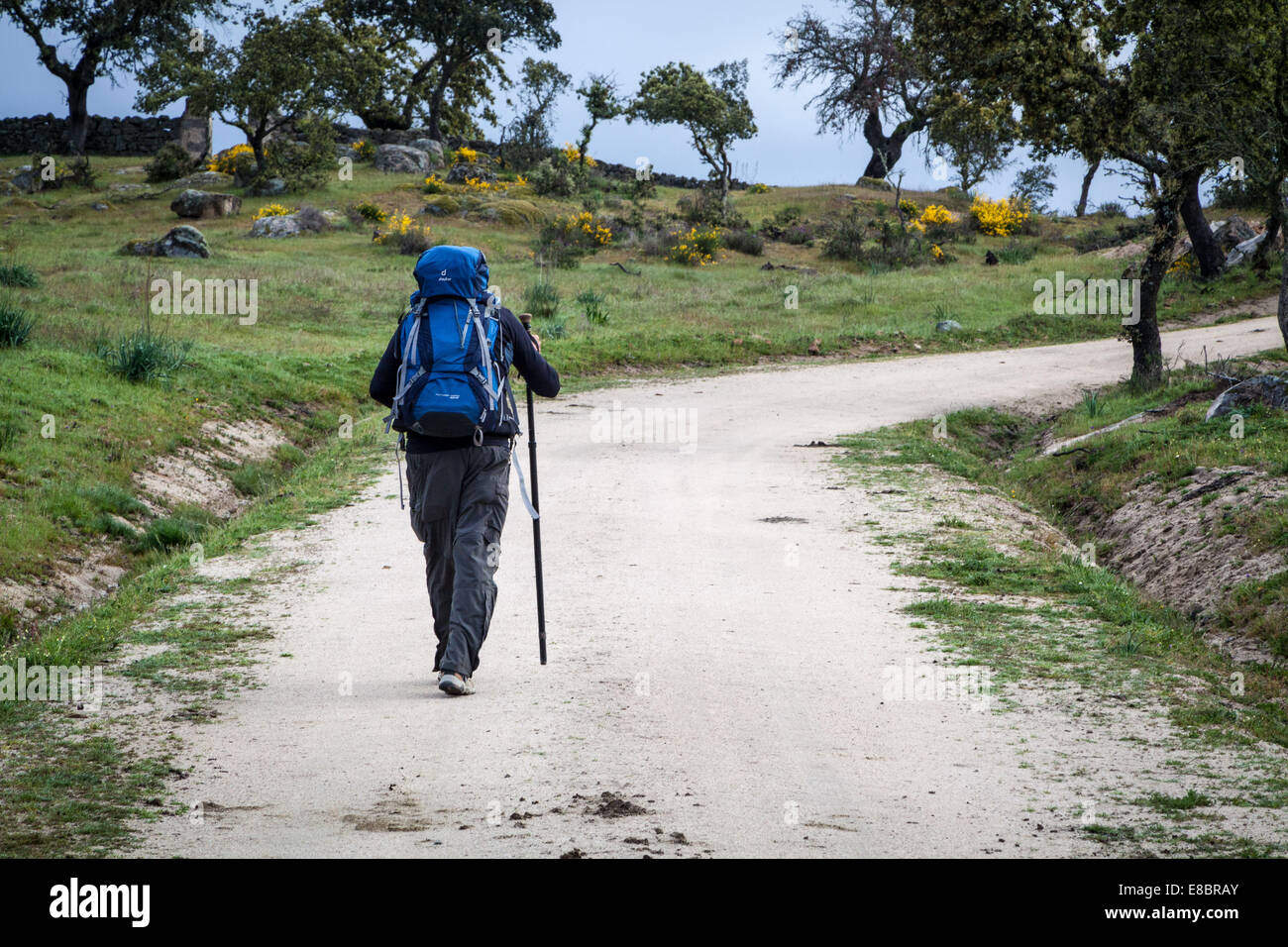 Walking the Camino to Santiago de Compostela, Spain on the Via la Plata or Silver Route - Stock Image