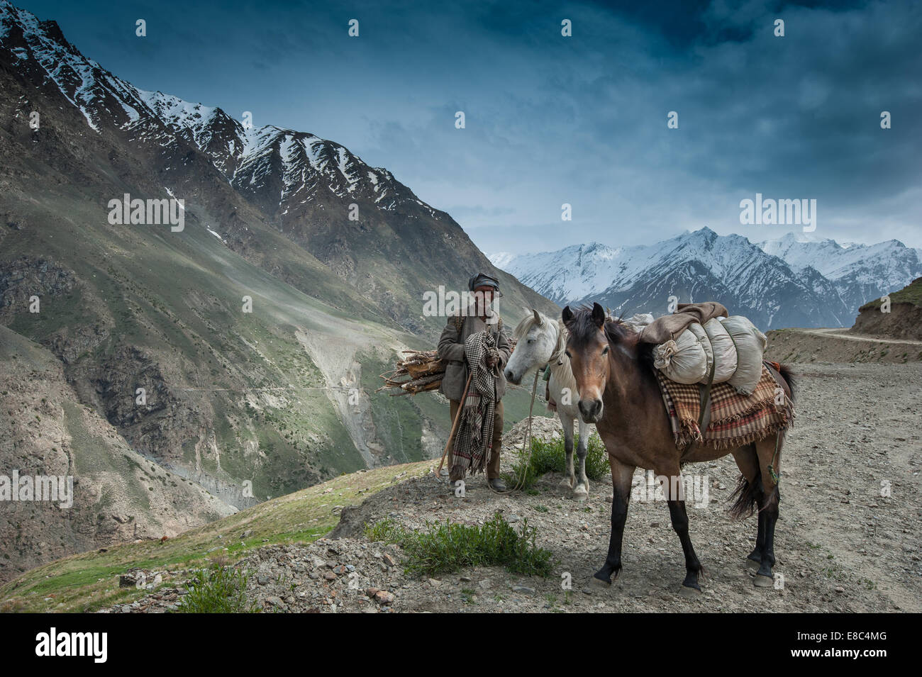 Mountain Nomads is our for herding with horses - Stock Image