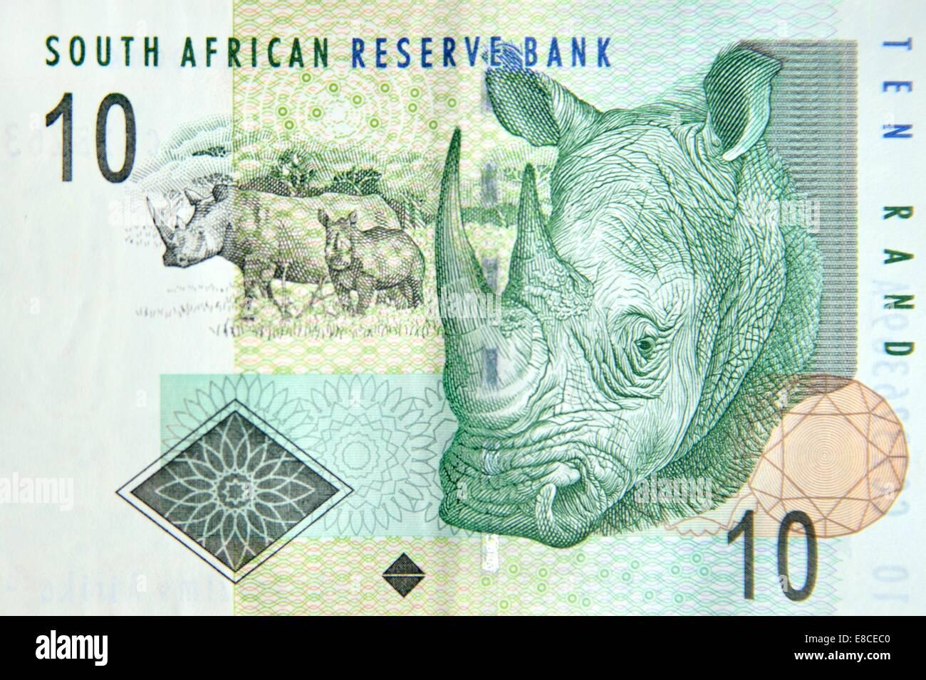 Ten Rand Banknote Stock Photos...