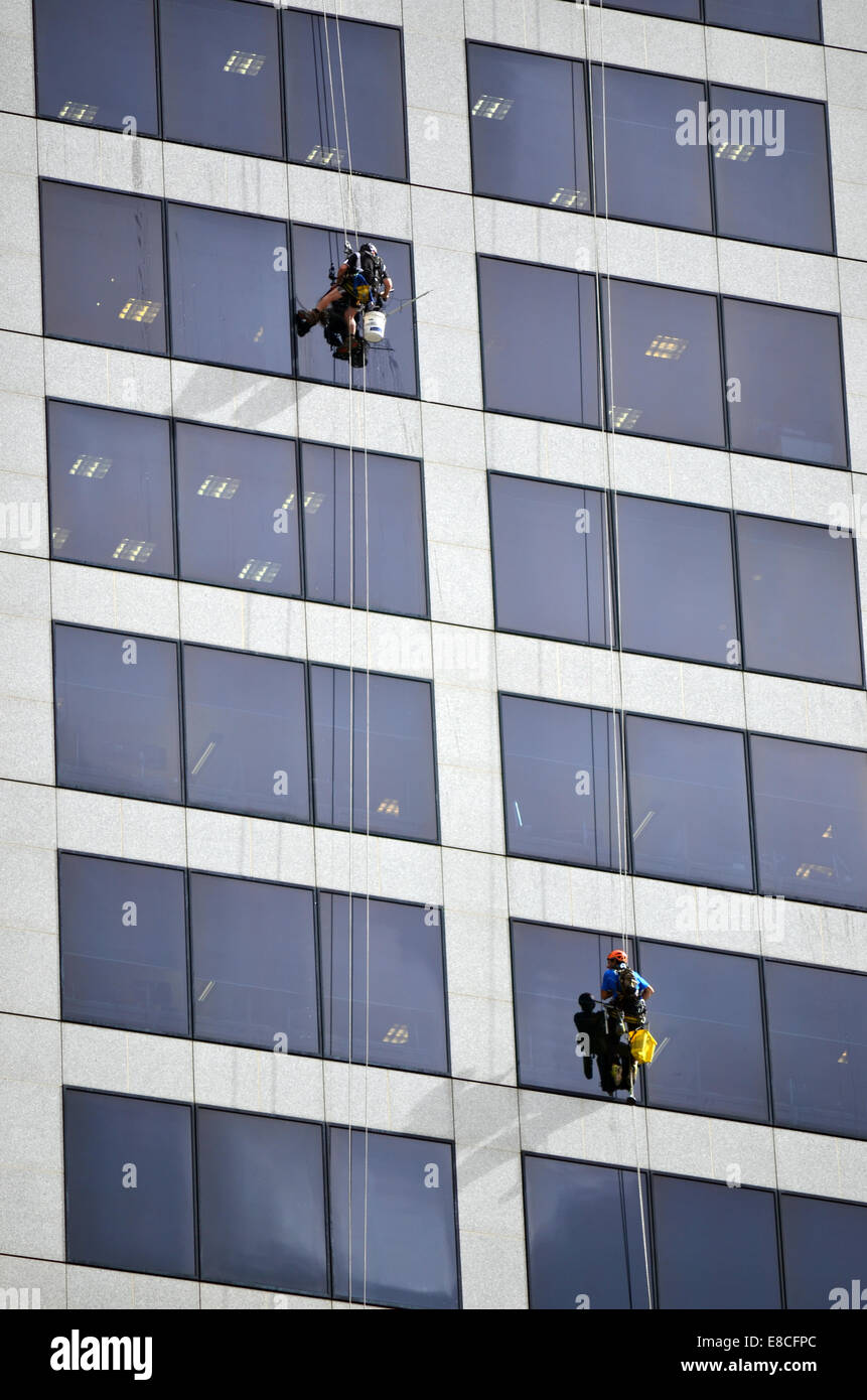 BRISBANE - SEP 25 2014:Window cleaners works on high rise building.Window cleaning is considered one of the most - Stock Image