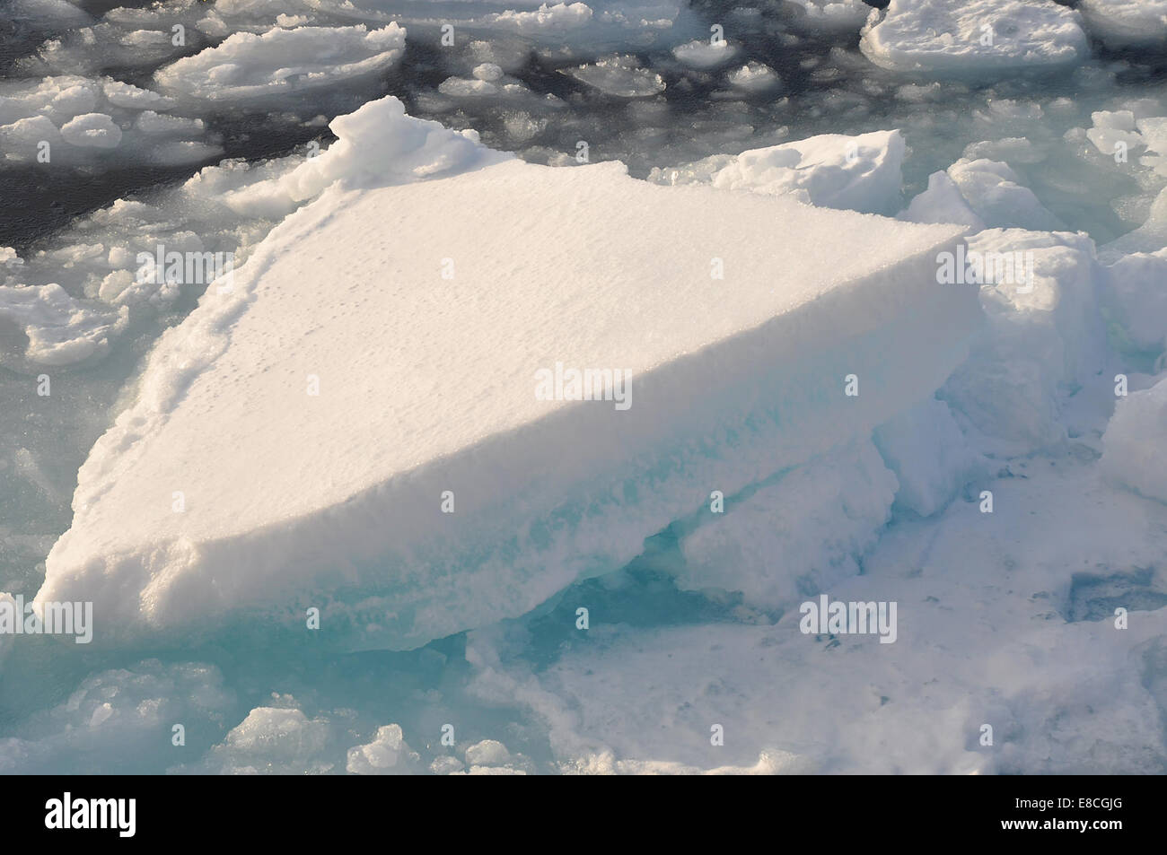 Easy as pie An ice floe in the Arctic Ocean resembles a slice of pie Sept. 9, 2009. - Stock Image