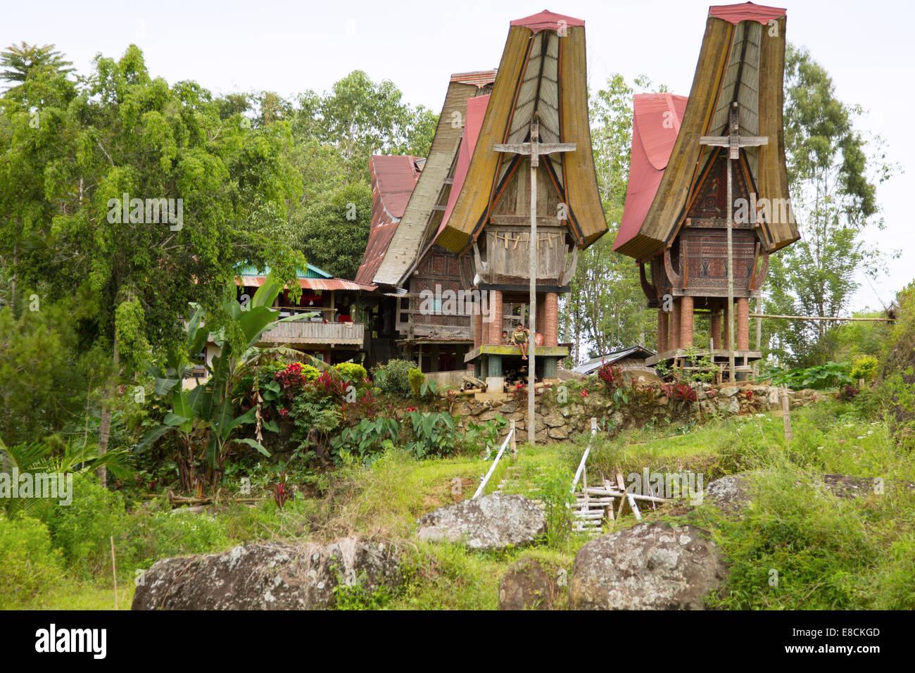 Traditional Torajan ancestral houses or Tongkonan in Sulawesi Stock Photo