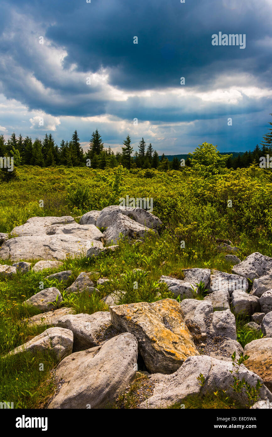Storm clouds over Bear Rocks Preserve, Monongahela National Forest, West  Virginia. - Stock