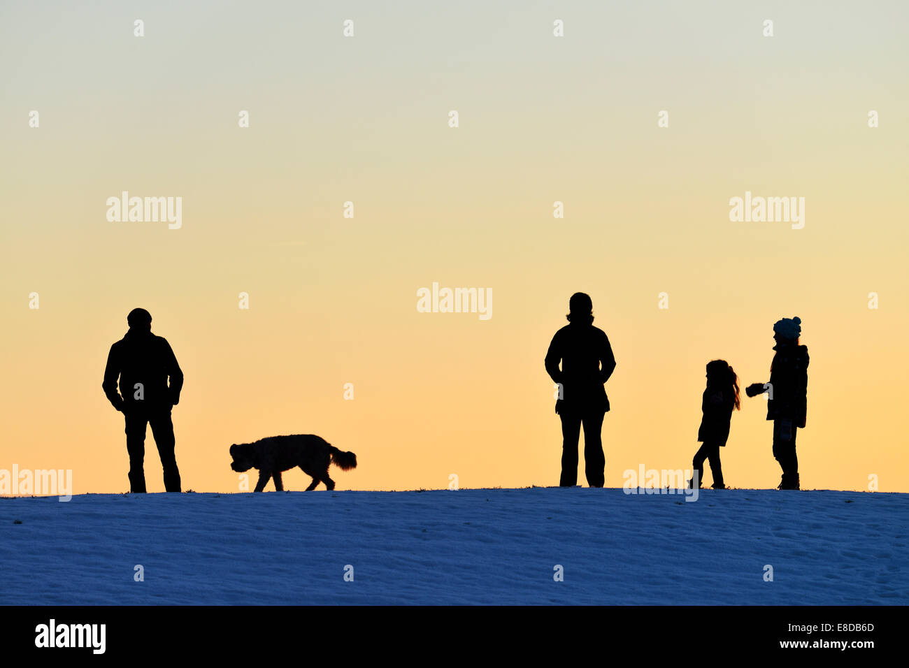 Family with dog, silhouette in the light of the setting sun, Horben, Canton Aargau, Switzerland - Stock Image