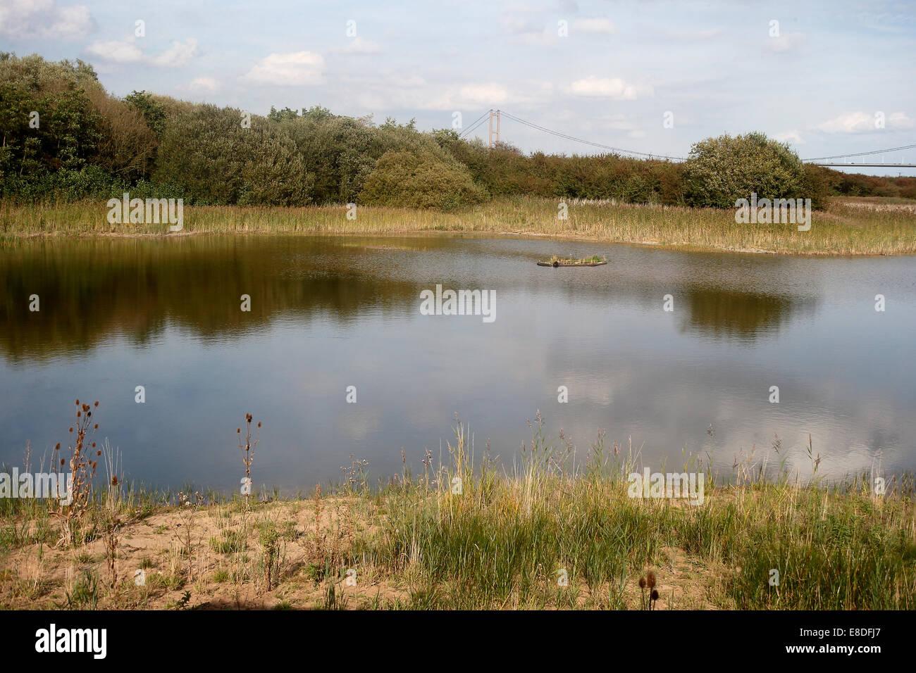 Far Ings RSPB reserve, Lincolnshire, September 2014 - Stock Image