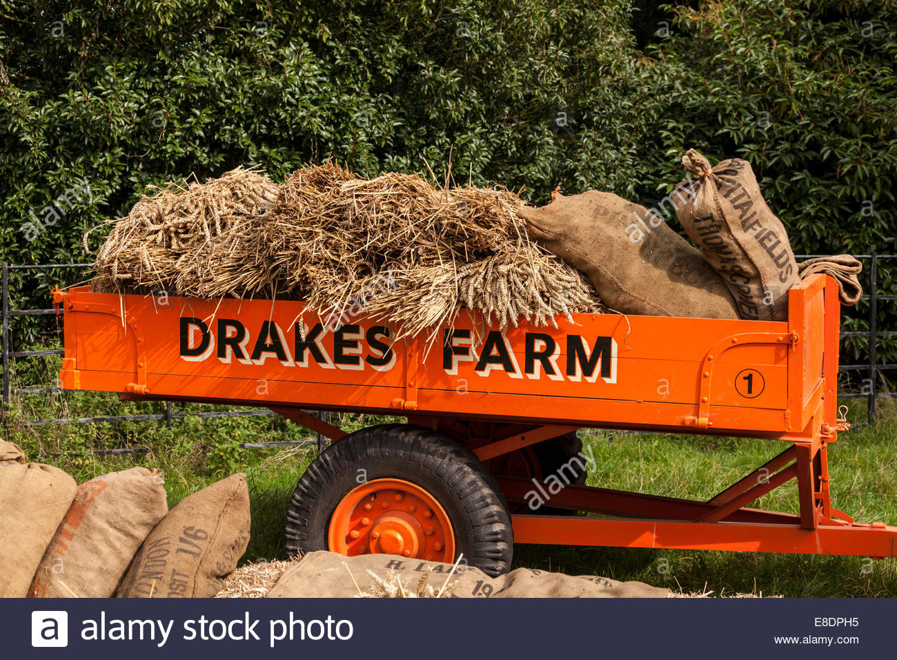 Farm trailer carrying sacks and wheat - Stock Image