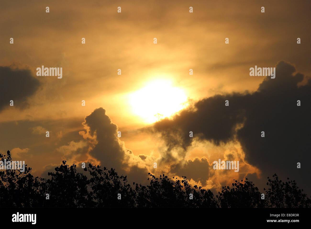 Sky, clouds, tree leafs, Sun, ' Sun set', sky line. - Stock Image