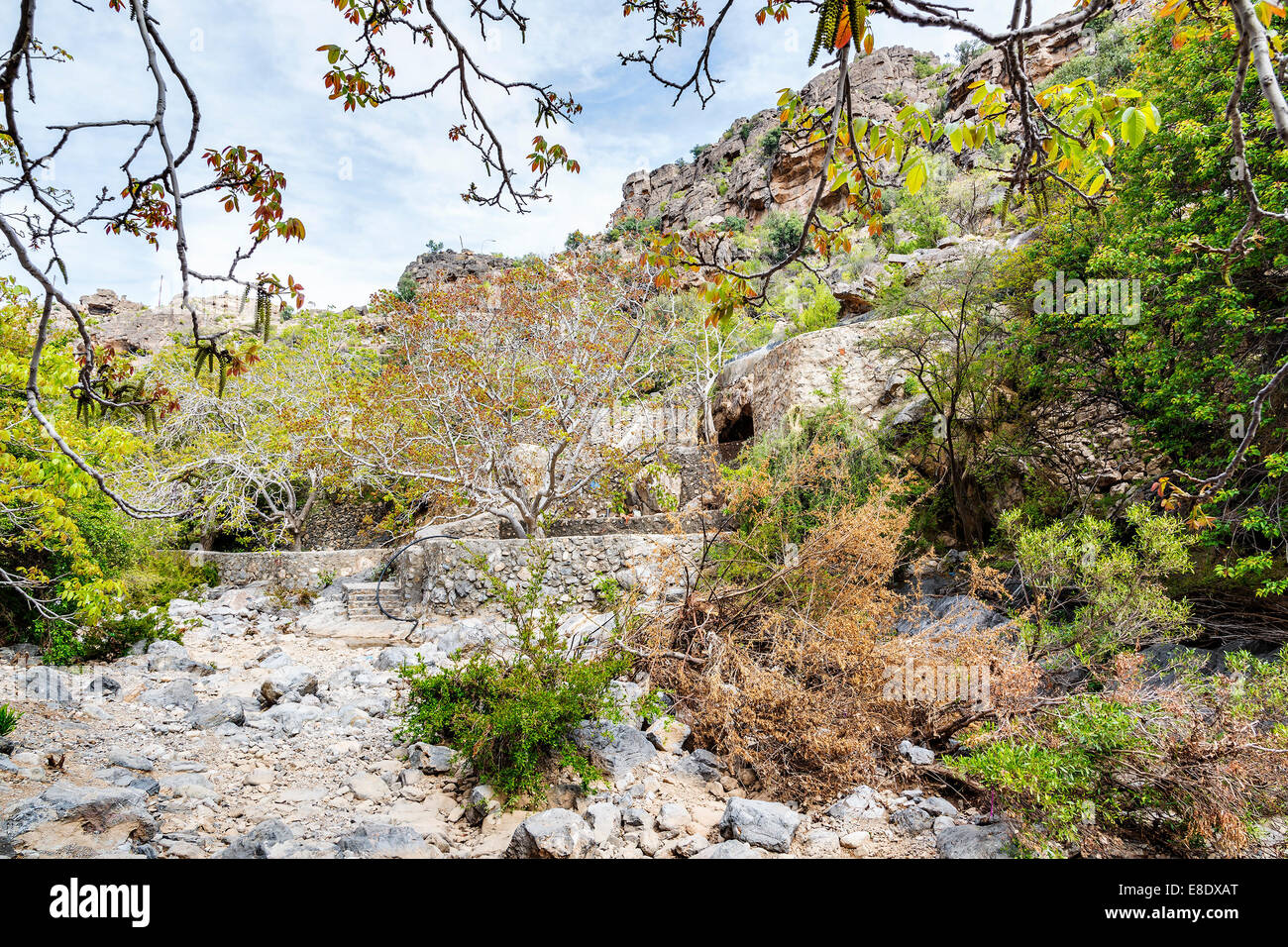 Image of riverbed Wadi Bani Habib in Oman - Stock Image