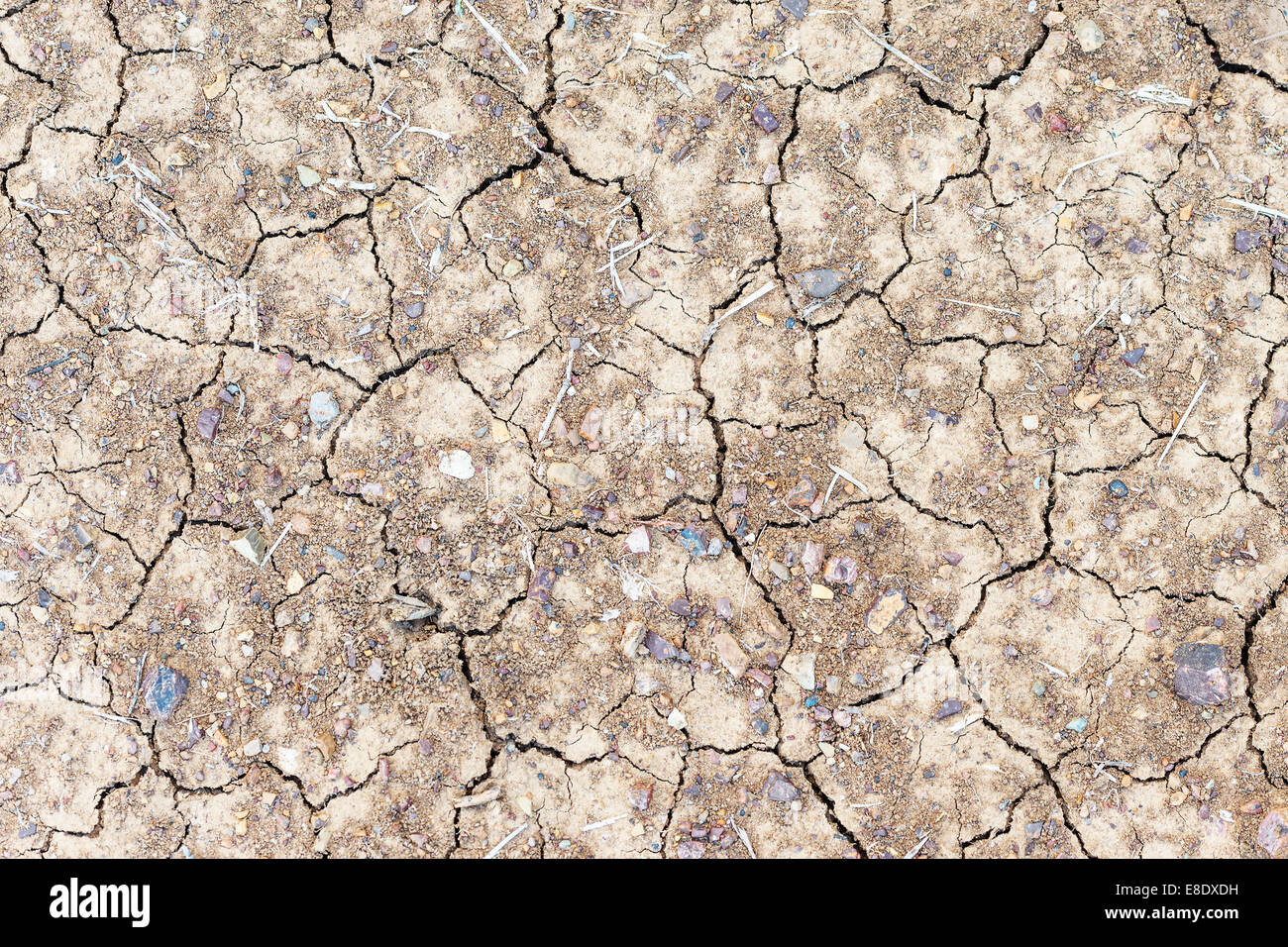 Image of parched ground in Tuscany, Italy - Stock Image