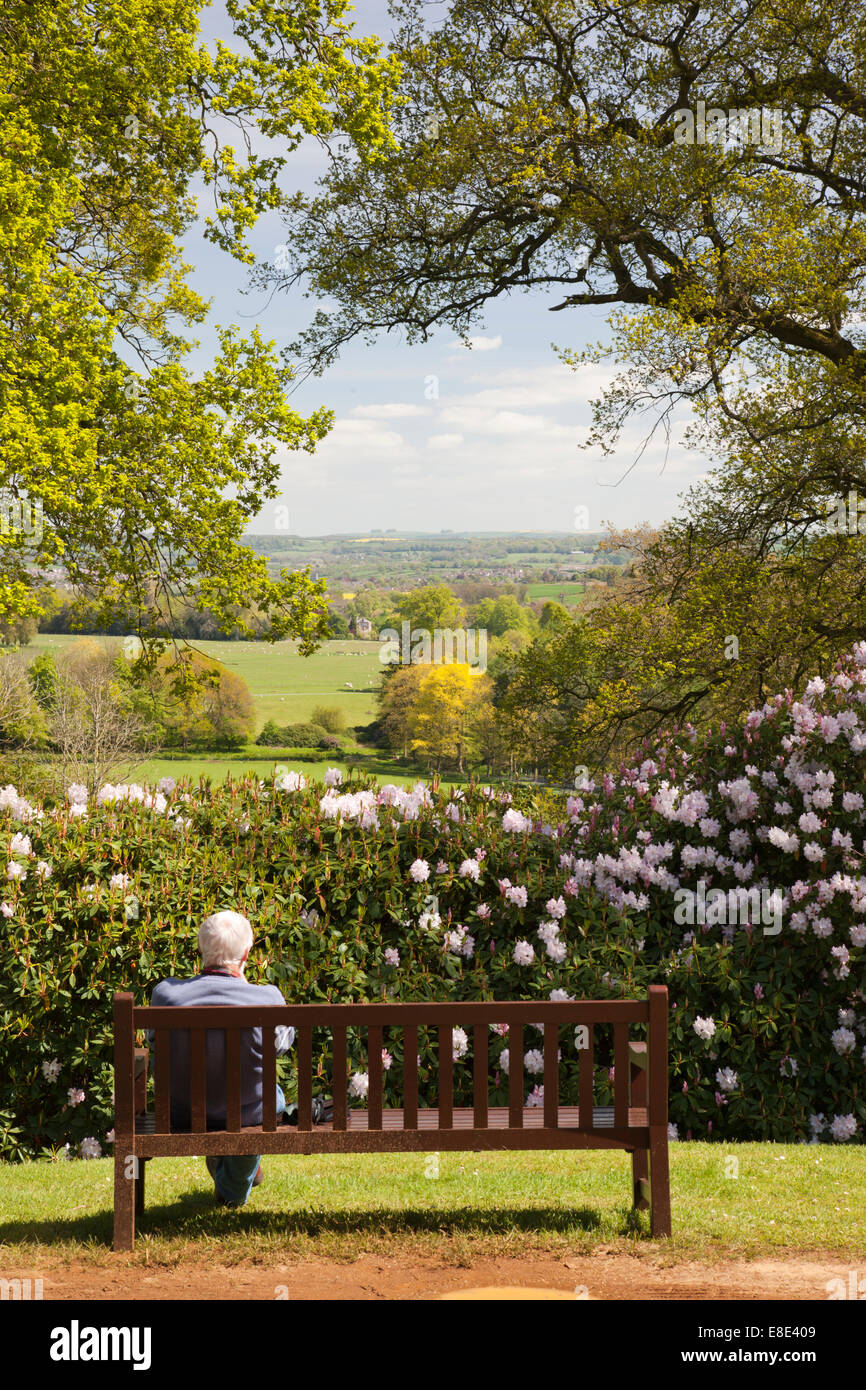 View from the Mausoleum, Bowood rhododendron spring garden, Derry Hill, Calne, Wiltshire Stock Photo
