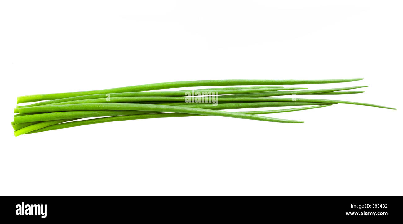 Chives bunch  isolated on white - Stock Image