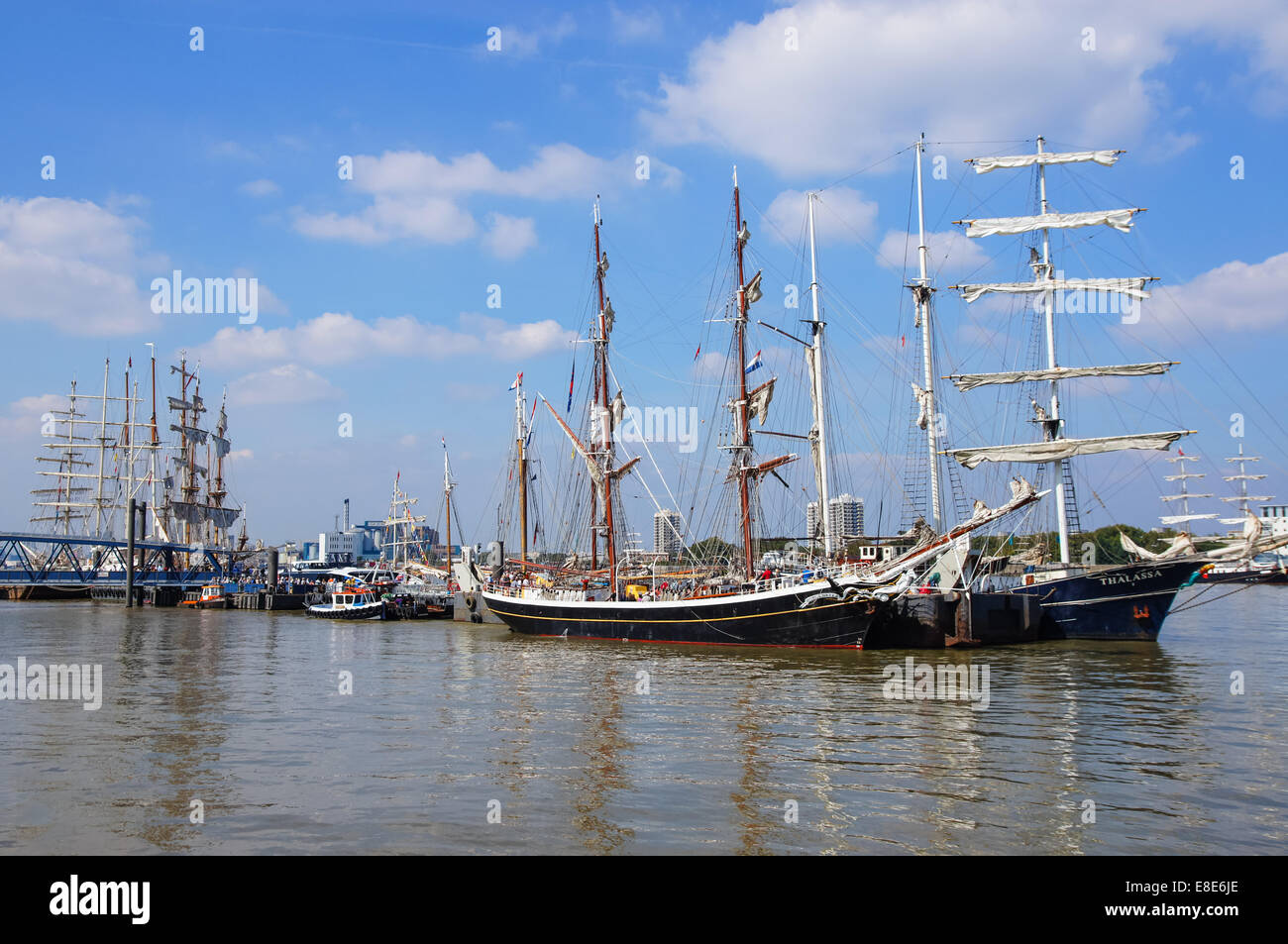 The Royal Greenwich Tall Ships Festival, London England United Kingdom UK - Stock Image