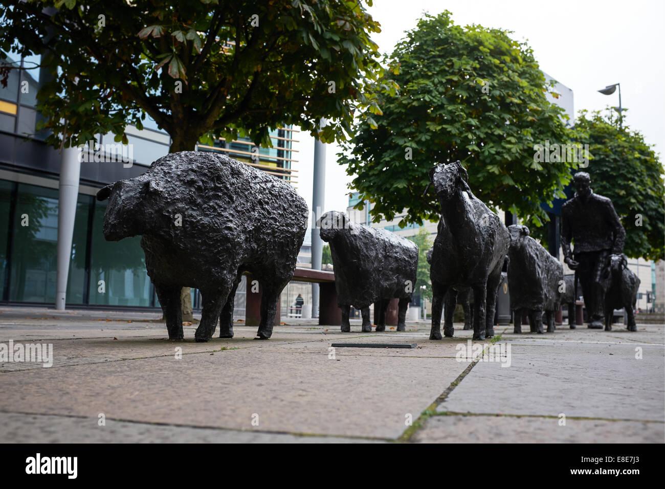 Sheep on the Road bronze sculpture by Deborah Brown in Belfast city centre - Stock Image