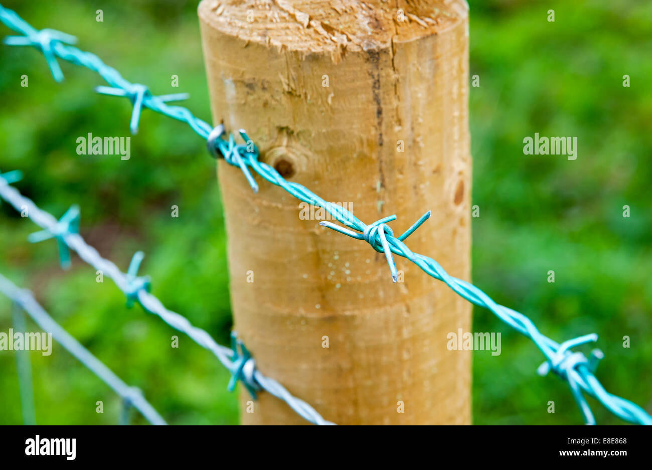 Close up of barbed wire on a wooden fencepost - Stock Image