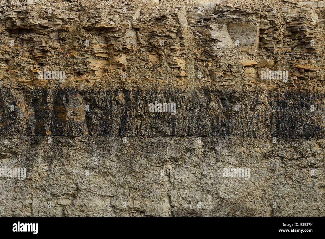 A seam of coal visible in a cross section of earth - Stock Image