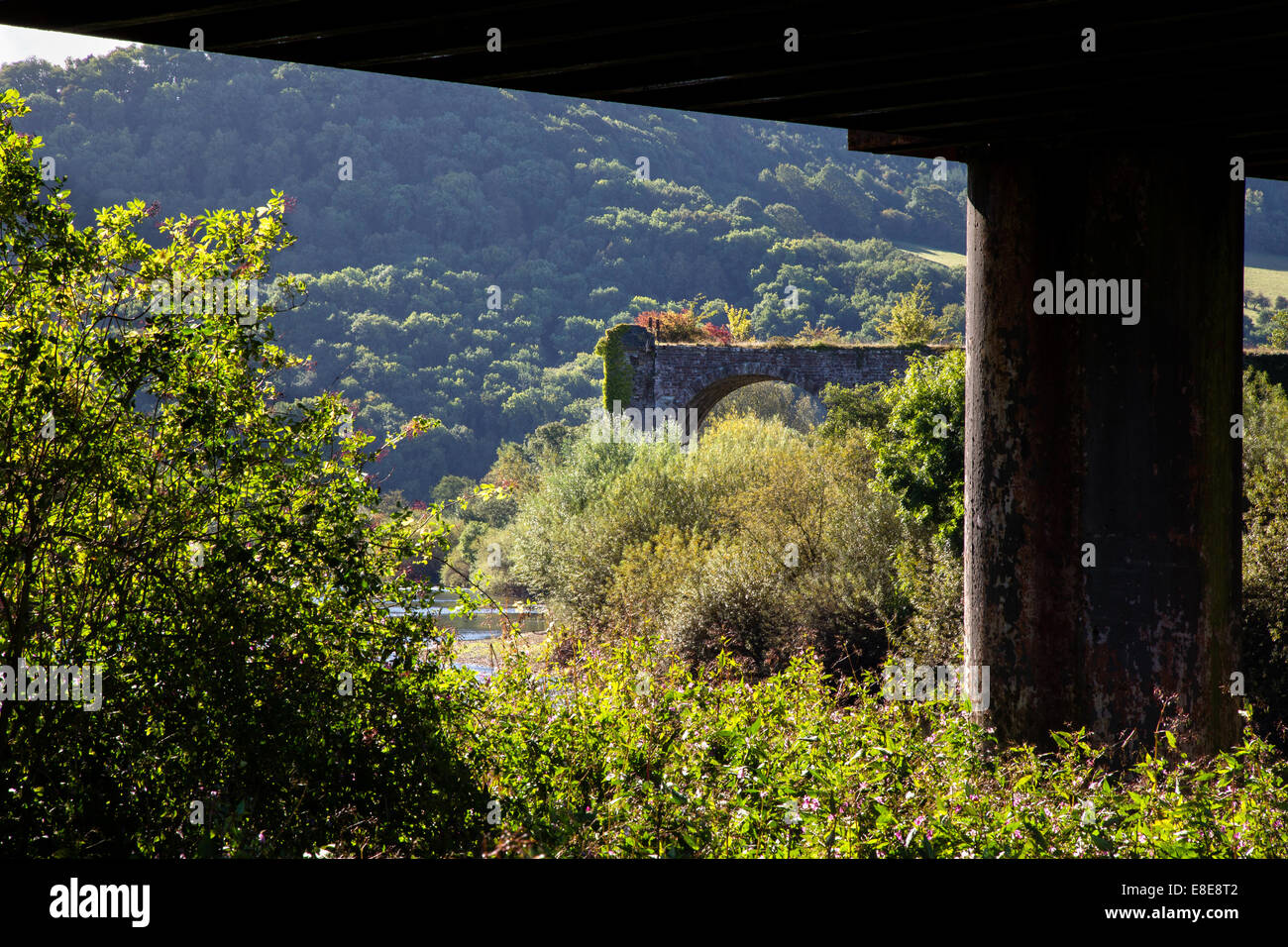 Disused railway viaducts over the river Wye near Monmouth Wales UK - Stock Image