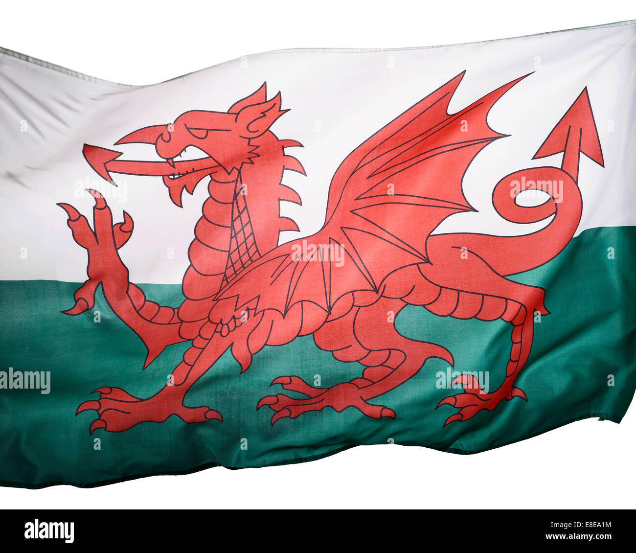 Close up detail of a Welsh flag - Stock Image