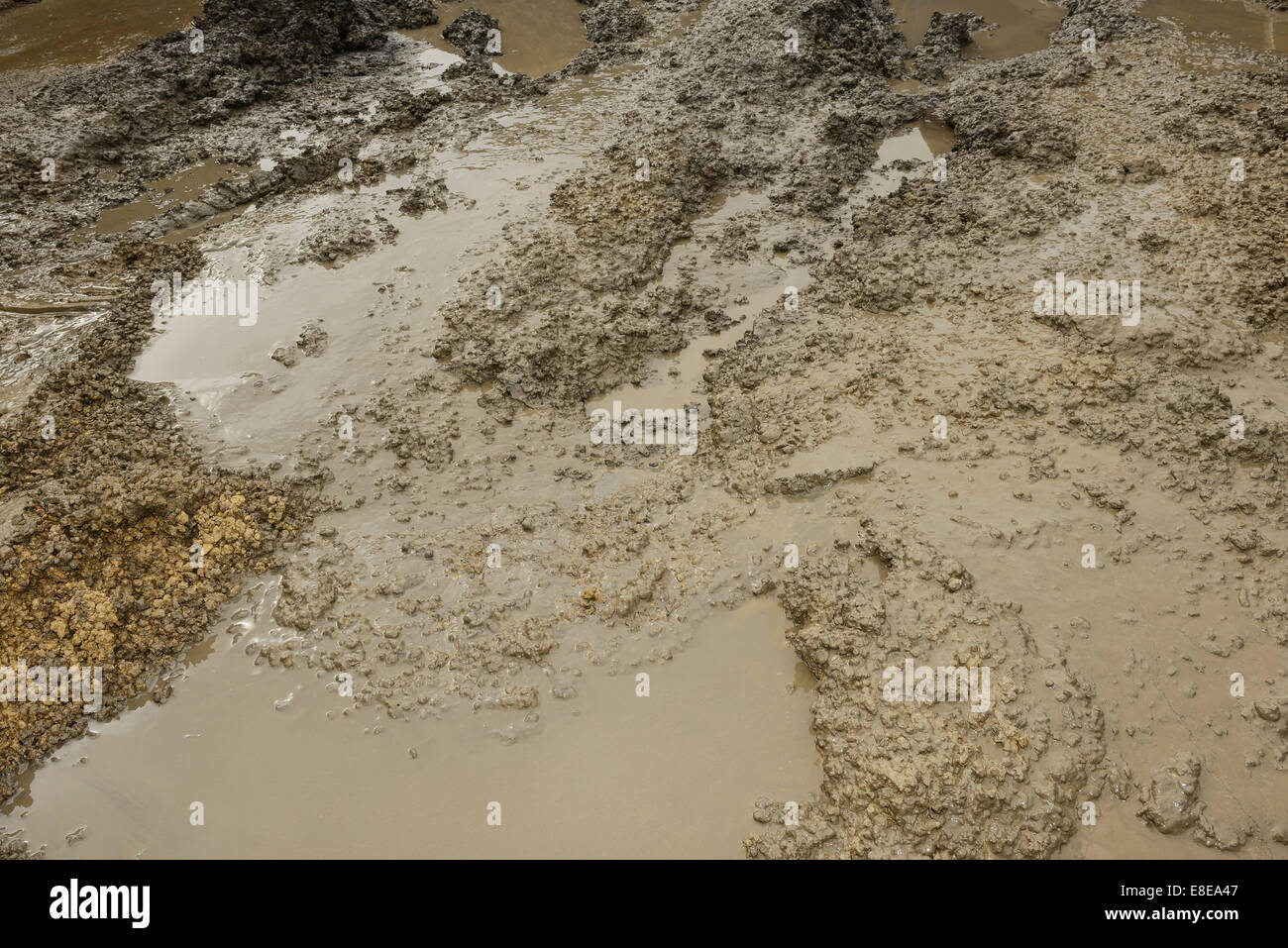 Mud on a building site - Stock Image