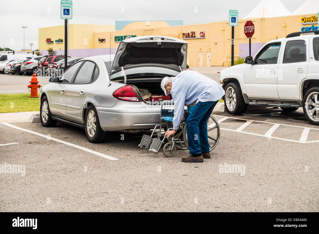 An elderly Caucasian man with white hair begins folding up a wheelchair to stow in the trunk of his car in a parking - Stock Image