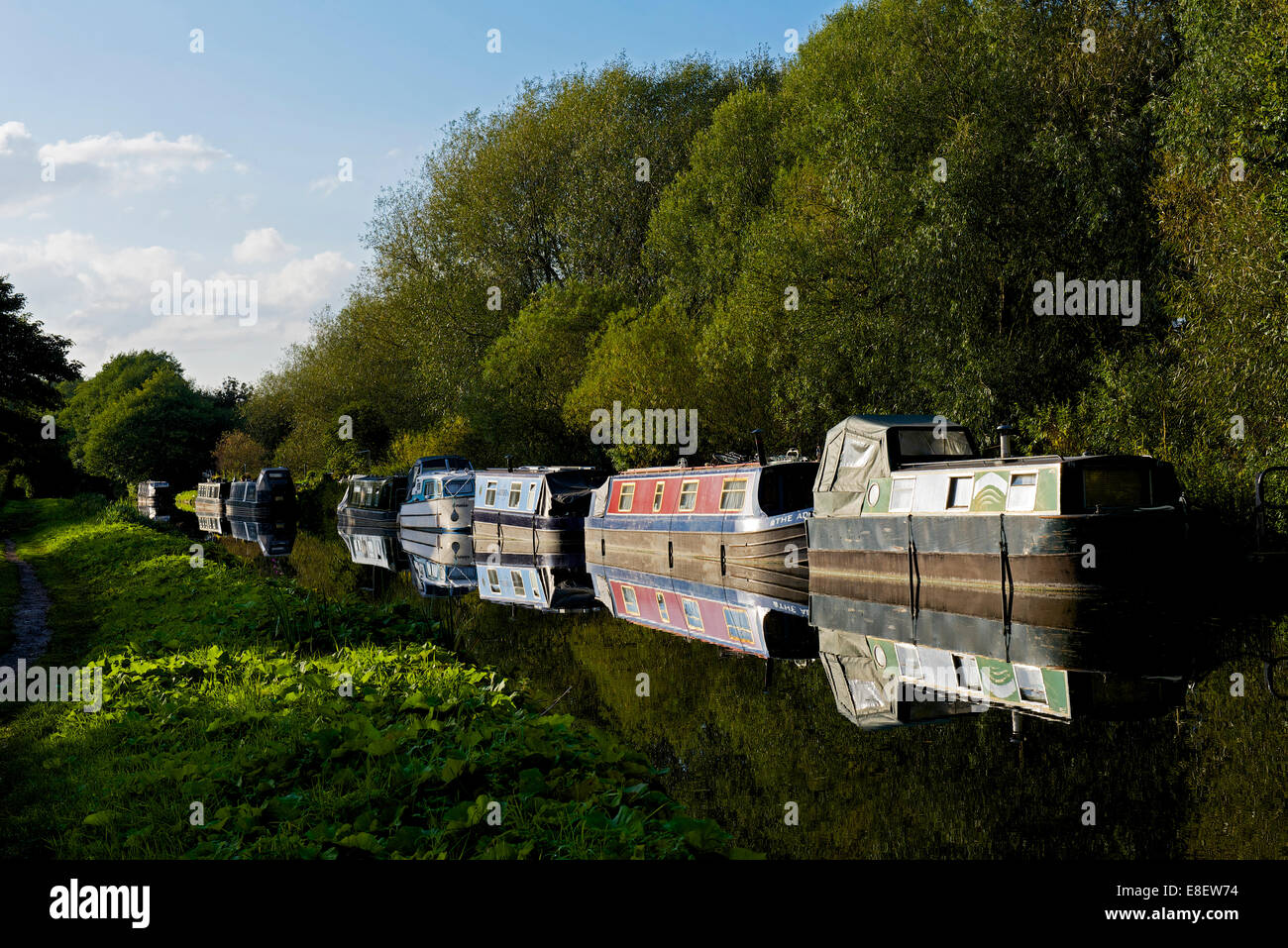 Narrowboats on the Trent and Mersey Canal at Great Haywood, Staffordshire, England UK - Stock Image