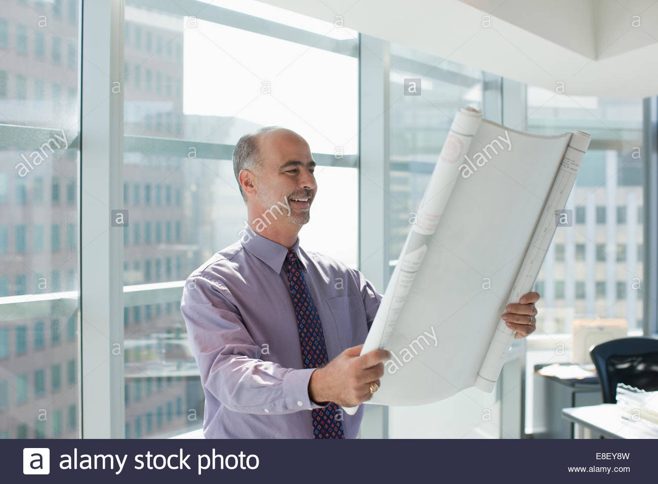 Businessman reading blueprint in office - Stock Image