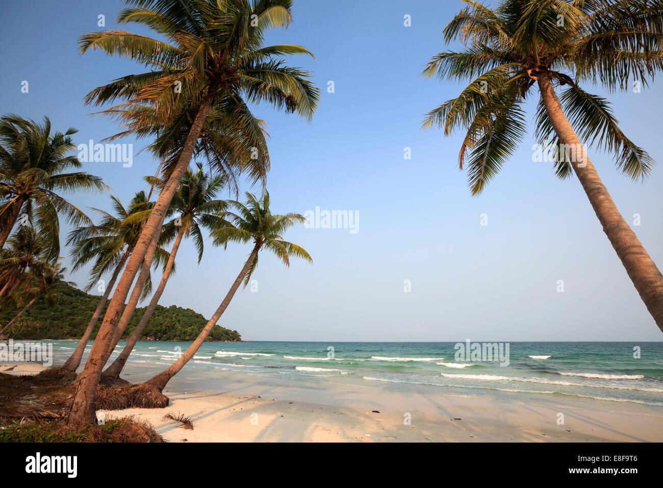 Vietnam, Phu Quoc, Sao Beach - Stock Image
