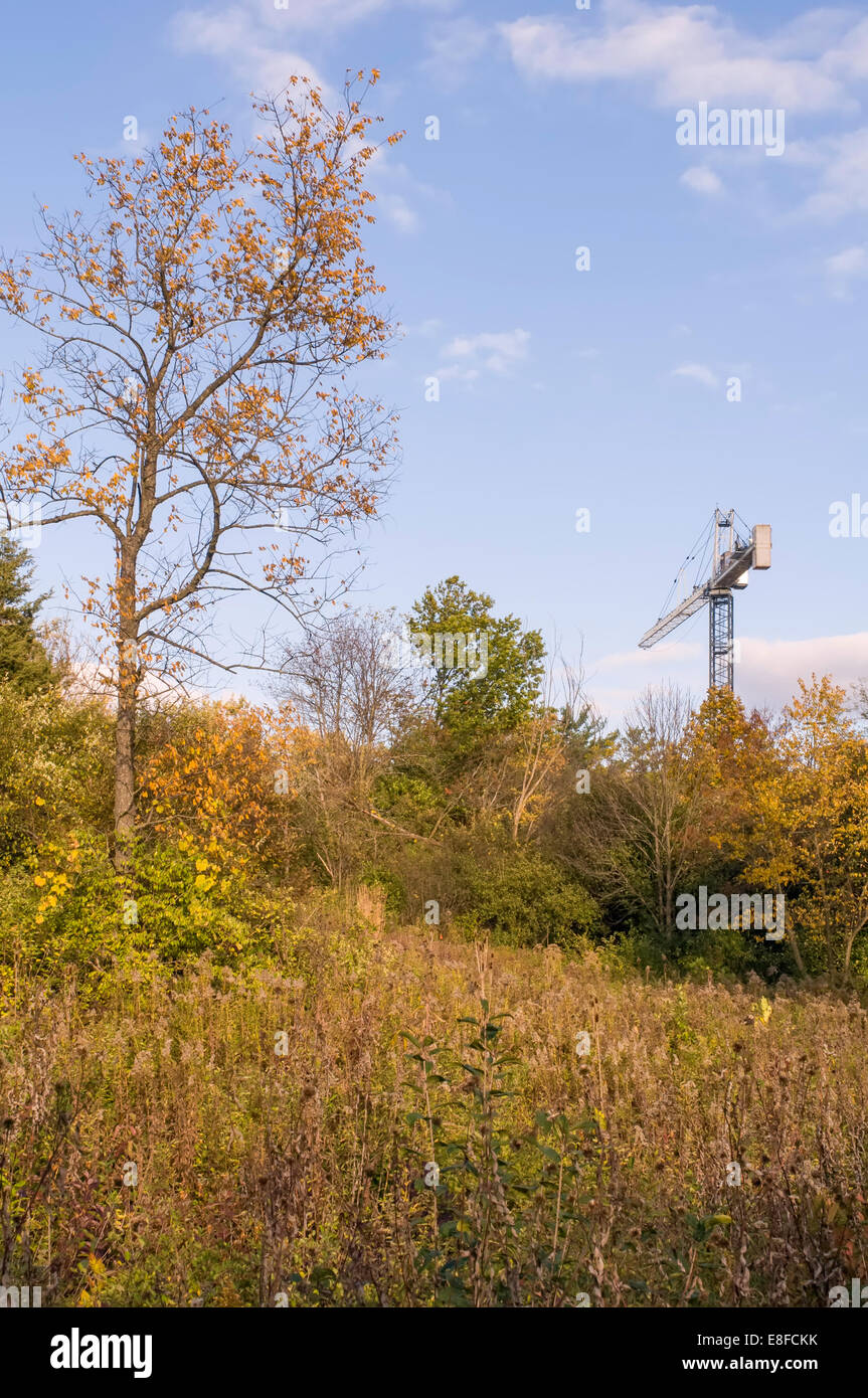 USA, Illinois, DuPage County, Downers Grove, Harbinger of new - Stock Image