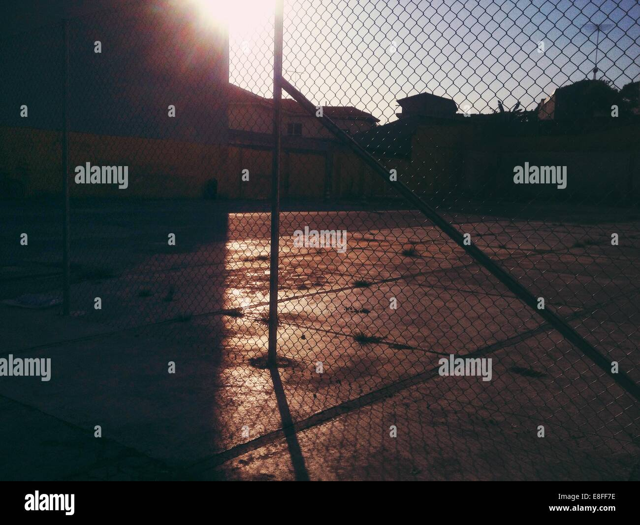 Fence at Sunset - Stock Image