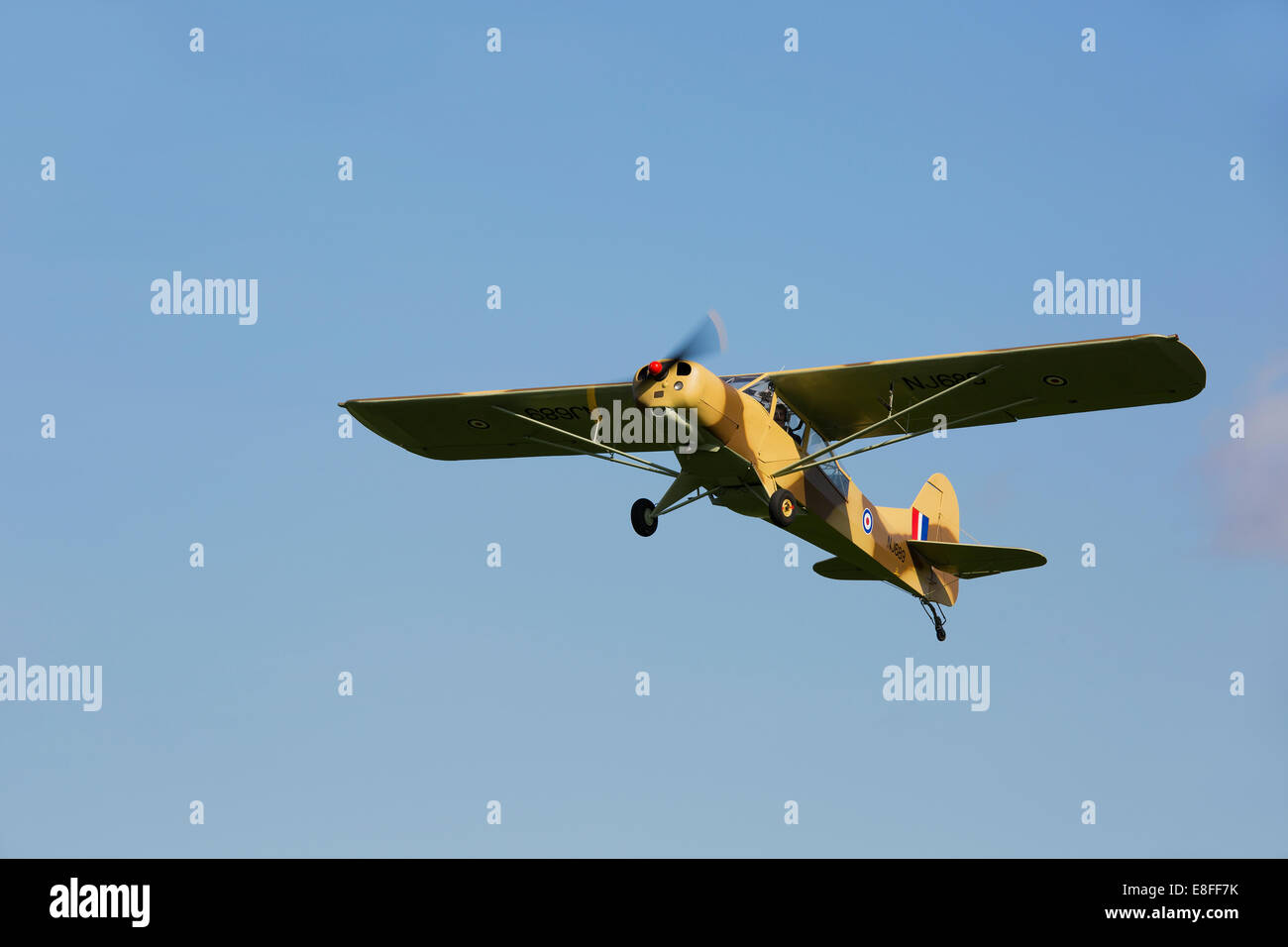 Auster 5-150 NL699 G-ALXZ in flight taking-off from Breighton Airfield - Stock Image