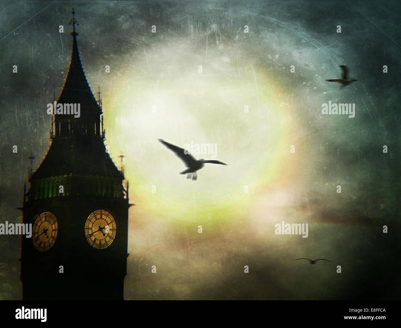 Birds flying past Big Ben, London, England, UK - Stock Image