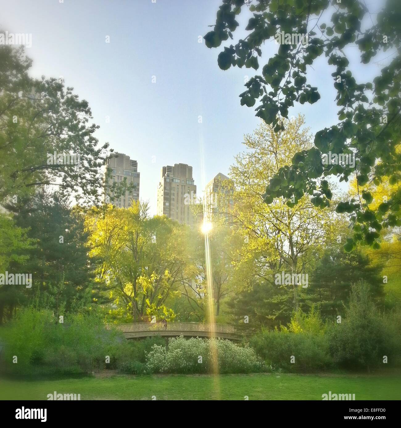 Skyscrapers and Central Park, Manhattan, New York, America, USA - Stock Image
