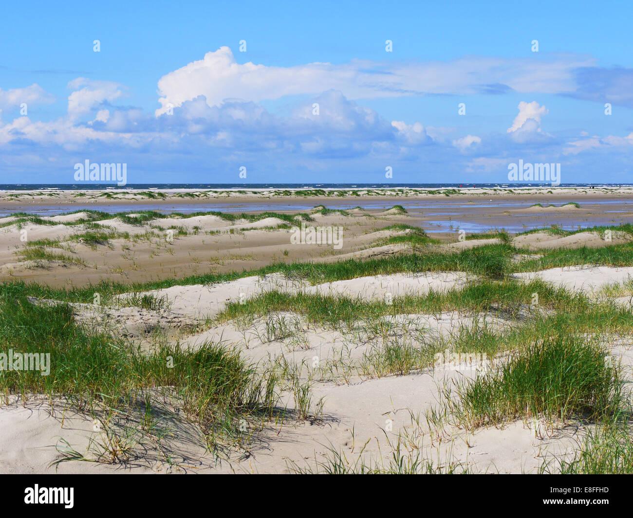 Empty beach, Fanoe Bad, Fanoe, Denmark - Stock Image