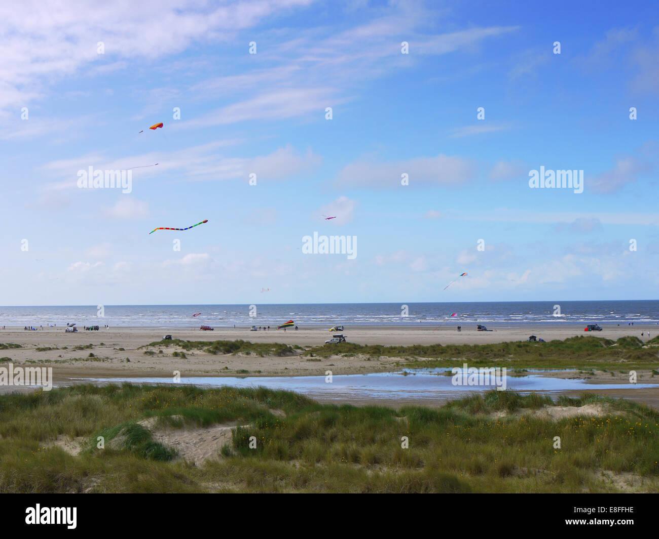 Kites on Rindby Beach, Fanoe, Denmark - Stock Image