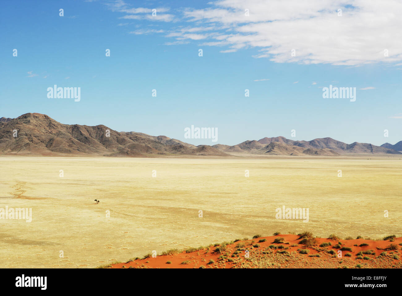 Desert and mountain landscape, Namib-Naukluft National park, Namibia - Stock Image