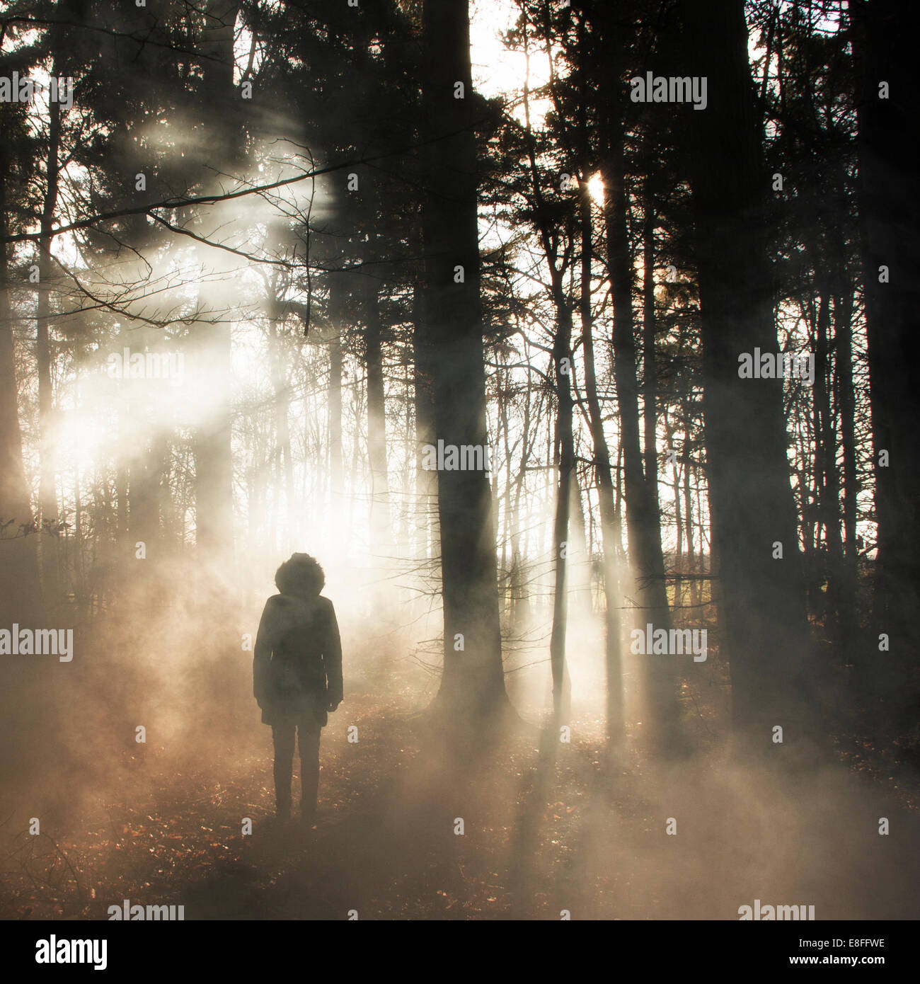 Silhouette of a woman in woods - Stock Image