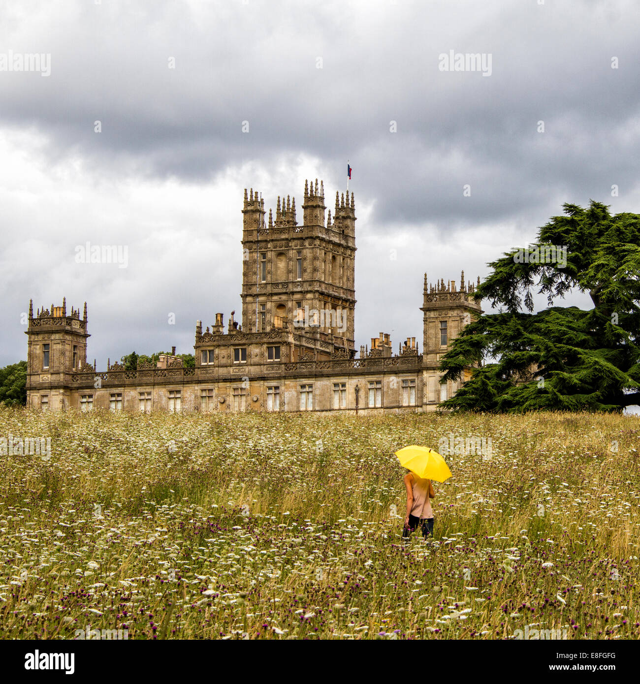 UK, Hampshire, Highclere Castle, Woman with yellow umbrella on meadow - Stock Image