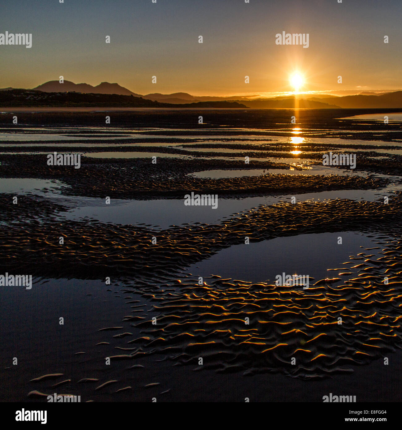 Landscape with sun reflected in puddles - Stock Image