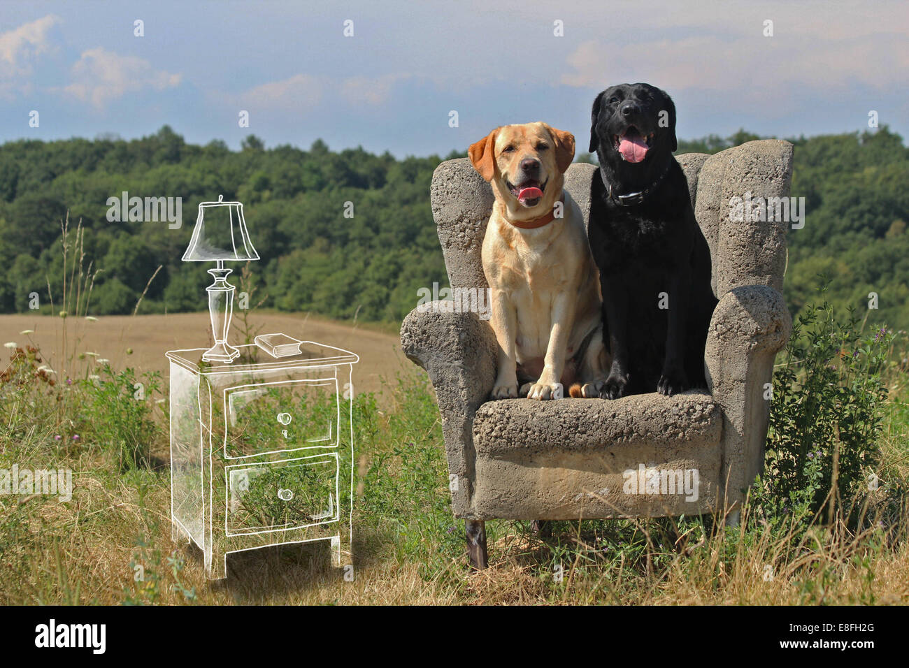 Conceptual image of dogs sitting in a living room Stock Photo