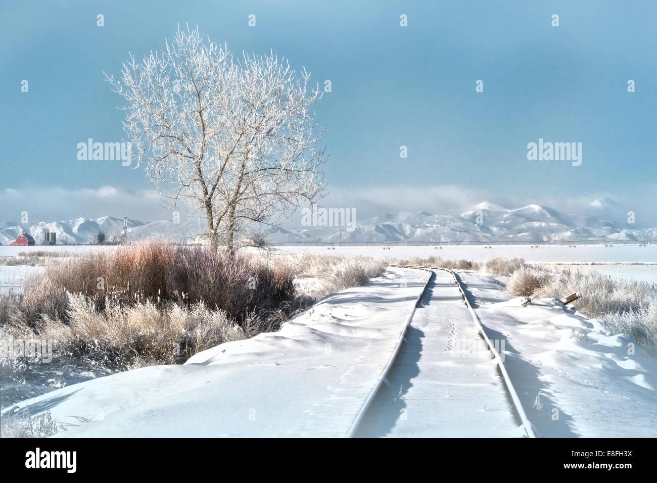 USA, Colorado, Snowy railroad tracks leading towards - Stock Image