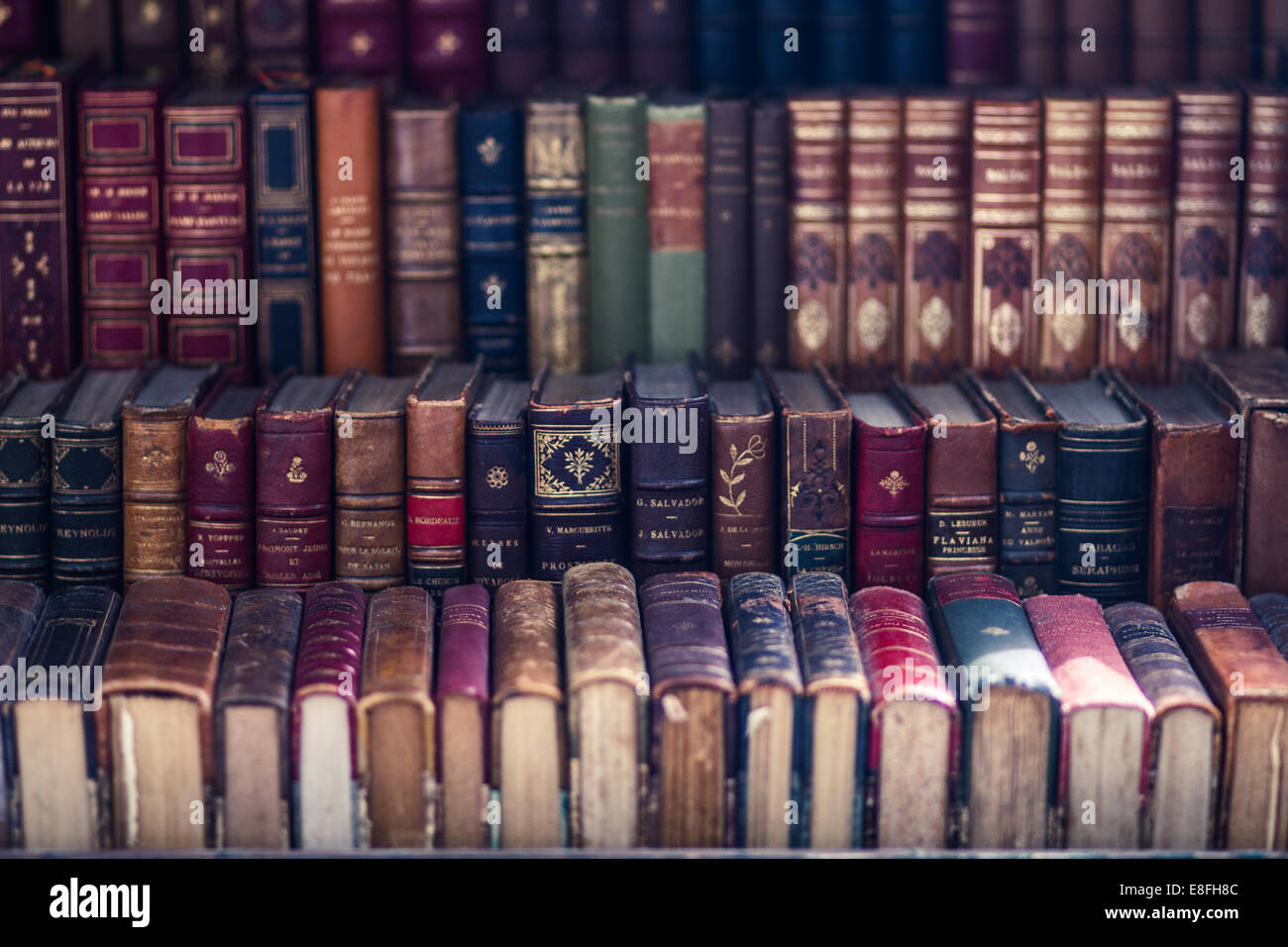 Close up of old antique books - Stock Image
