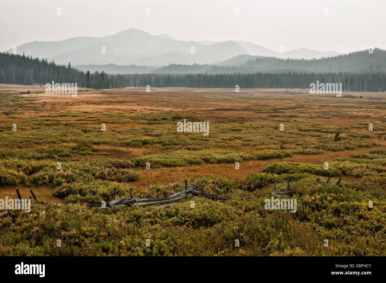 USA, Idaho, Custer County, Stanley, Smokey Mountains in foggy day - Stock Image