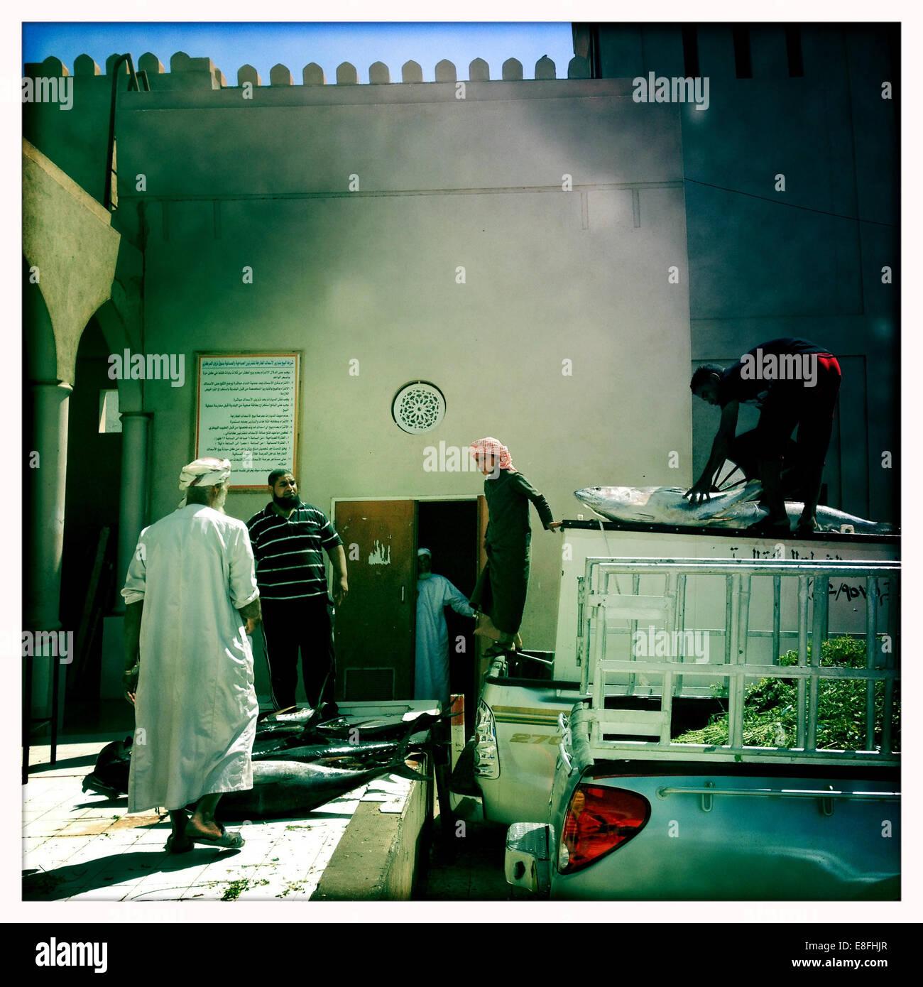 Oman, Nizwa, Yellowfin Tuna's delivery - Stock Image