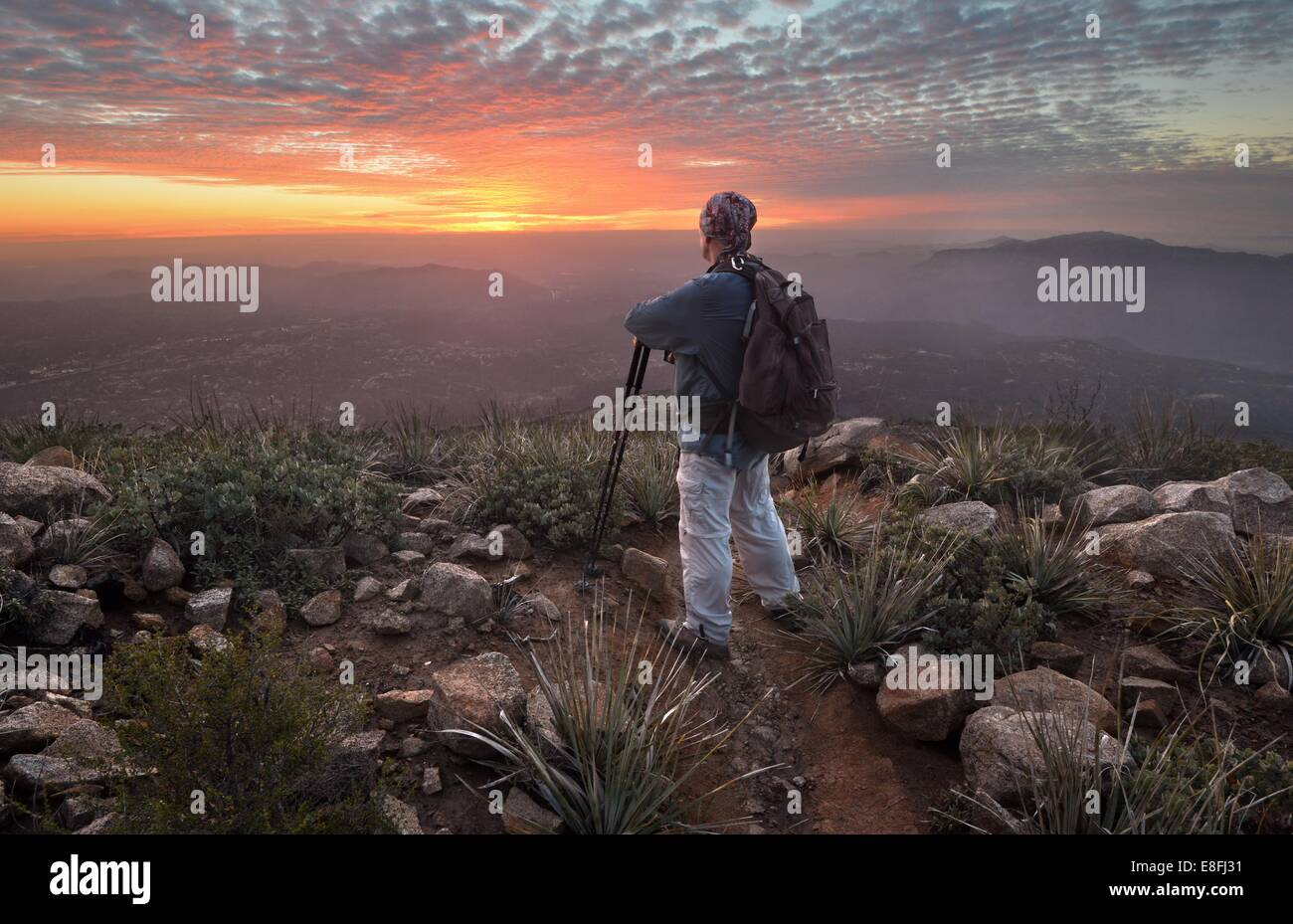 Man looking at view at sunset, Cleveland National Forest, California, America, USA - Stock Image