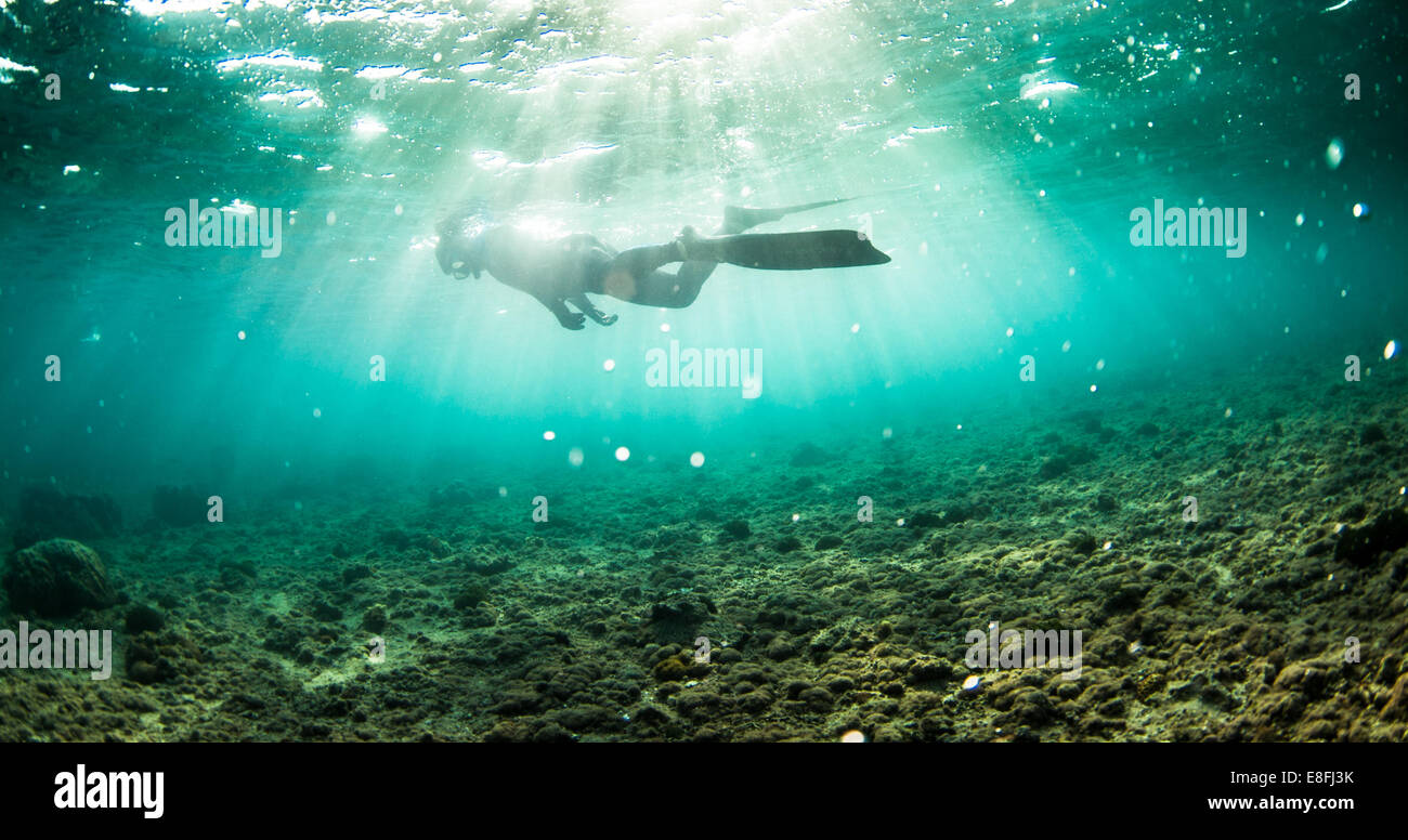 Person snorkeling in ocean, Okinawa, Japan - Stock Image