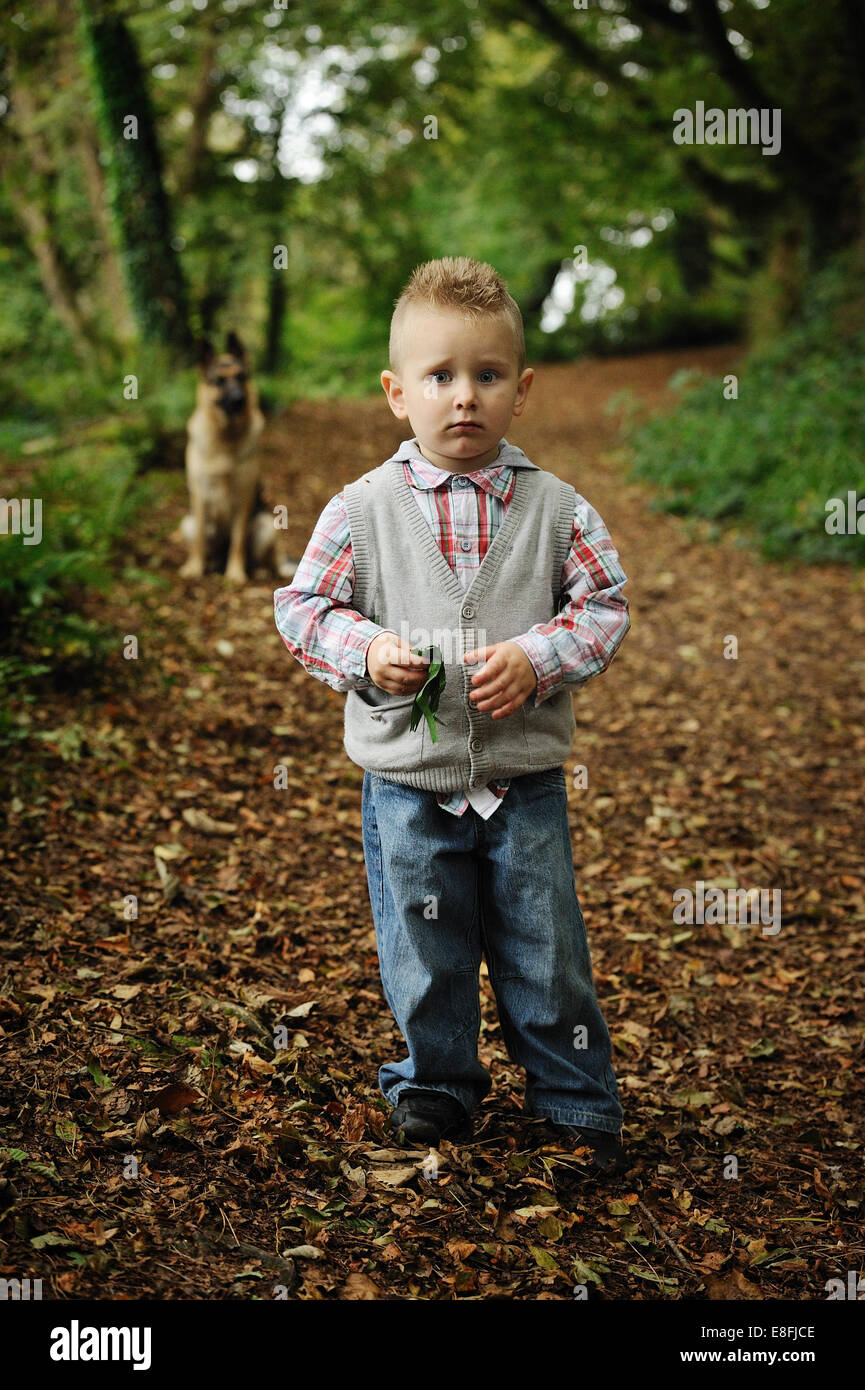 Little Boy In A Forest - Stock Image