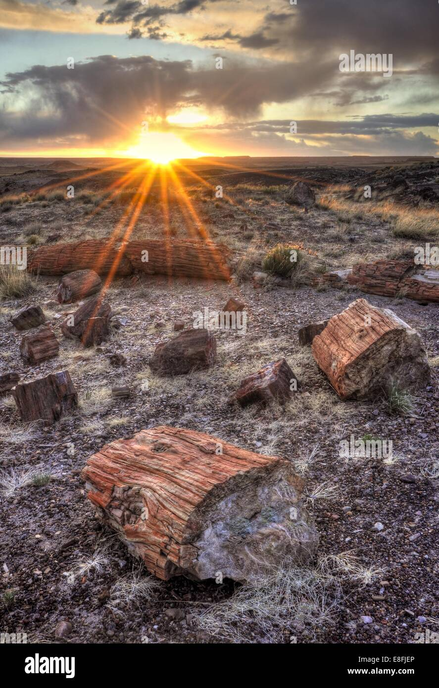 USA, Arizona, Petrified Forest National Park, Sunset in Petrified Forest - Stock Image