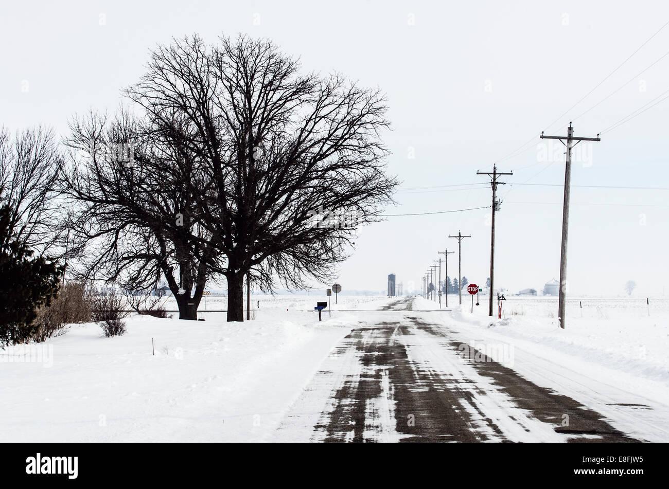 USA, Illinois, Winter landscape in American Midwestern farmland - Stock Image