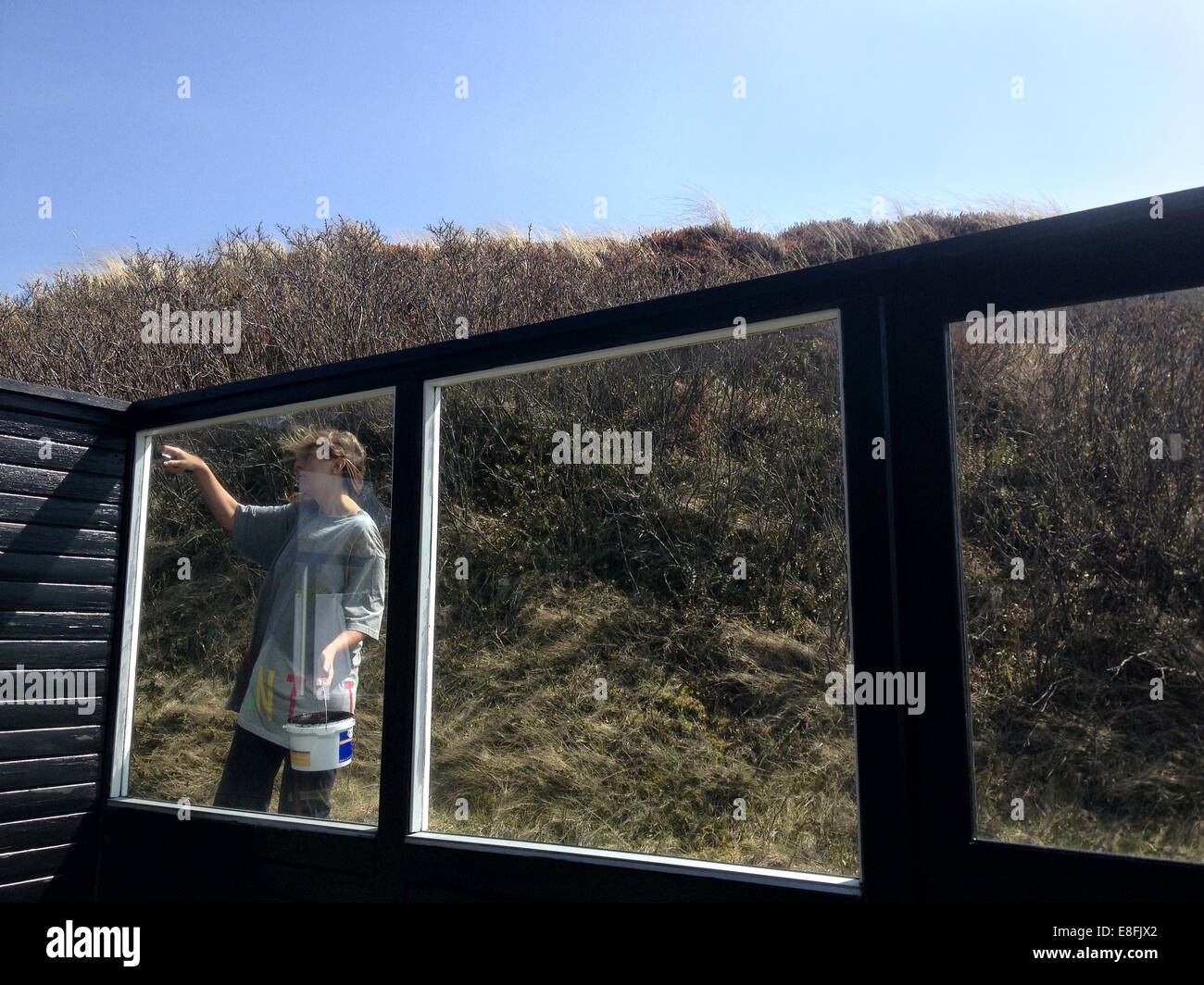 Woman Painting Fence - Stock Image